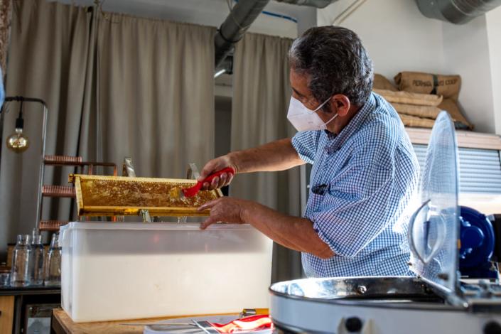 Cet apiculteur enlève les opercules des alvéoles d'un cadre