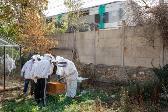 Les élèves apiculteurs ouvrent une ruche sans se soucier du train qui passe